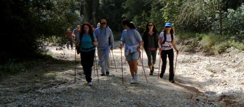 Nordic Walking στην ηλιόλουστη Πάρνηθα. Κυριακή 16.03.14
